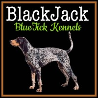 BlackJack BlueTick Kennel, Logo